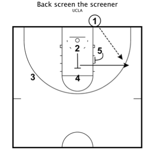 Ucla back screen the screener